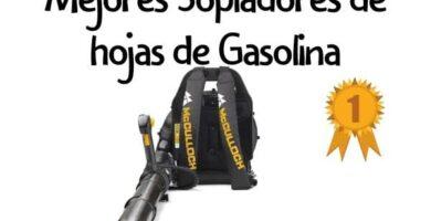 soplahojas gasolina