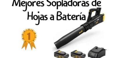 soplador hojas bateria